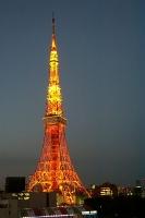 tokyo tower.jpg